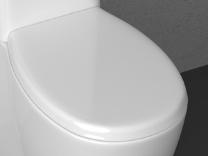 SENTIMENTI TOILET SEAT WRAPAROUND SOFT-CL